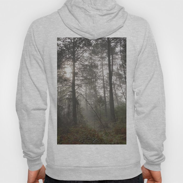 Calm morning... Into the foggy woods Hoody