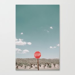 A STOP IN THE DESERT Canvas Print