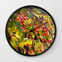 Bright red berries on a tree Wall Clock