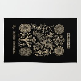 """Lichenes"" from ""Art Forms of Nature"" by Ernst Haeckel Rug"