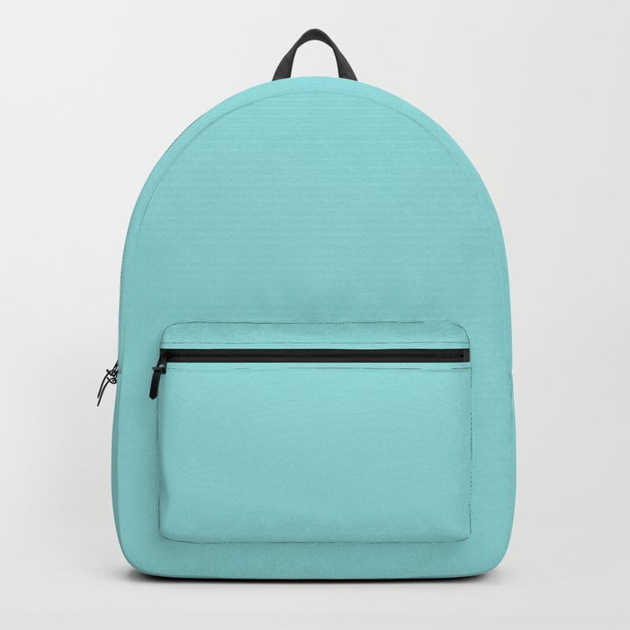 Aqua Shell (Blue) Color Backpack