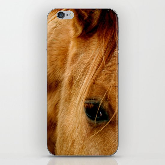 """a horse of a different color"" iPhone & iPod Skin"