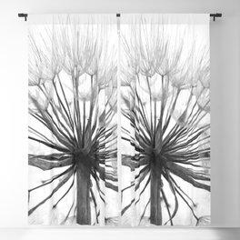 Black and White Dandelion Blackout Curtain