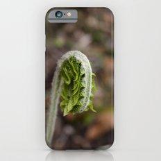 Fiddlehead Fern iPhone 6s Slim Case