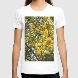The Lemon Tree T-shirt