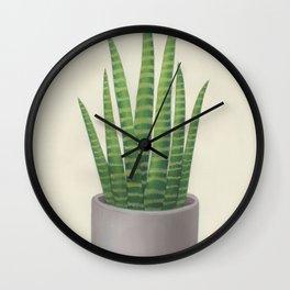 Sansevieria trifasciata Wall Clock