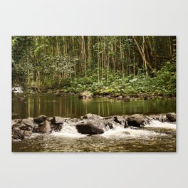 Waipio Valley River Canvas Print