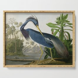 John James Audubon Louisiana Heron Painting Serving Tray