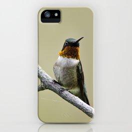 Hummingbird Portrait iPhone Case