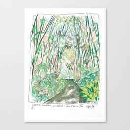 Bamboo Cathedral Sketch - San Marino CA Canvas Print