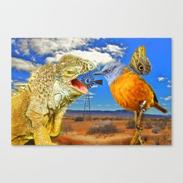 Tourists in Namaqualand Canvas Print