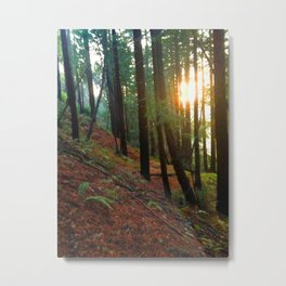 Talking To The Trees Metal Print
