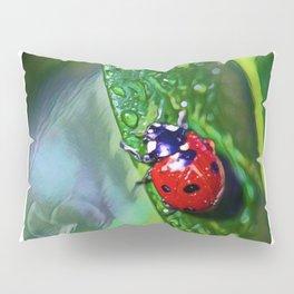 Ladybug Leaf   Painting  Pillow Sham