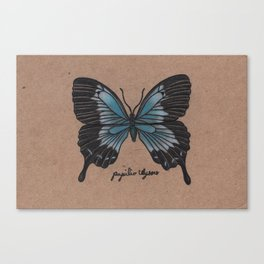 The Ulysses Butterfly - Papilio Ulysses Canvas Print