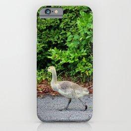 Three Goslings iPhone Case