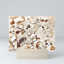 Treasures in the Sand Mini Art Print