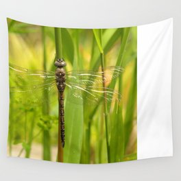 Dragonfly In The Reeds... Wall Tapestry