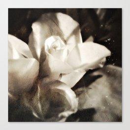 roses tintype Canvas Print