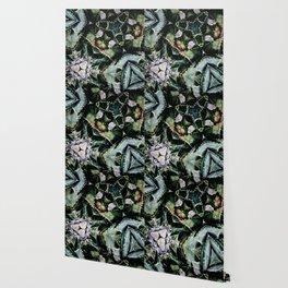 Succulents On Show No 2 Wallpaper