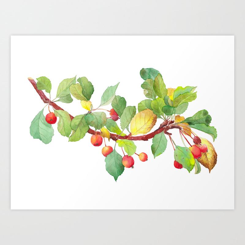 Autumn Crab Apple Tree Branch Watercolour Art Print By Zoya Art