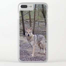 Choose your way Clear iPhone Case