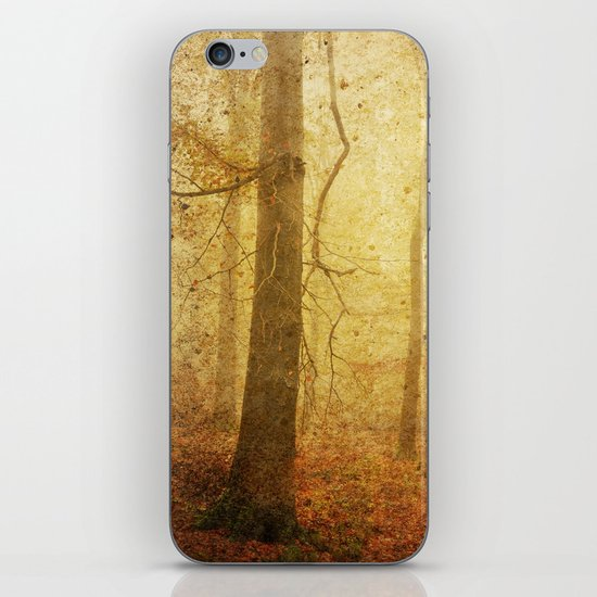 November I iPhone & iPod Skin