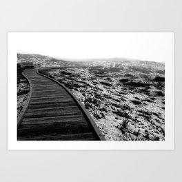 Asilomar Trail Art Print
