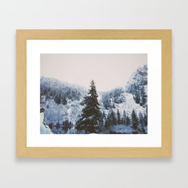 Coast Collective - Pacific Northwest Series Tree Line Framed Art Print