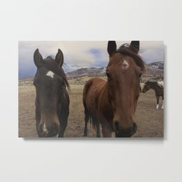 Horses Before the Storm Metal Print