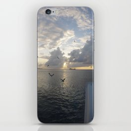 Cayman Island Sunset iPhone Skin