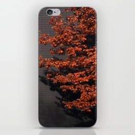 Slate of Orange iPhone Skin