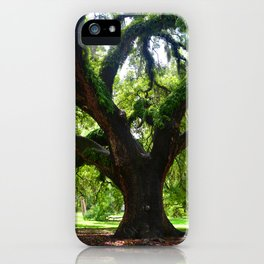 Live Oak Tree iPhone Case