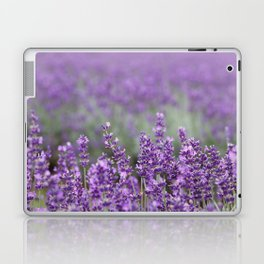 Purple Lavender Flowers Laptop & iPad Skin