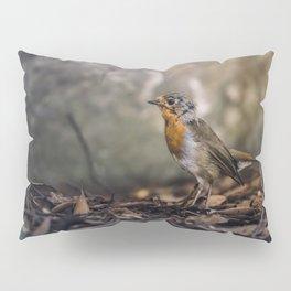 A careful look Pillow Sham