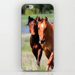Horses & Bluebonnets II iPhone Skin