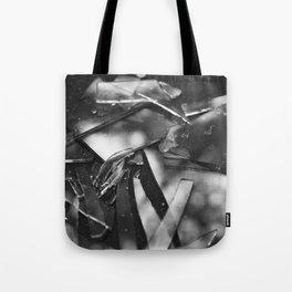 Broken Light Tote Bag