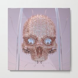 Skl Metal Print