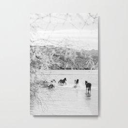 fun in the water Metal Print