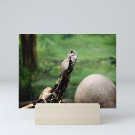 Gaboon Viper Mini Art Print