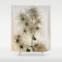 Florales · plant end 7 Shower Curtain