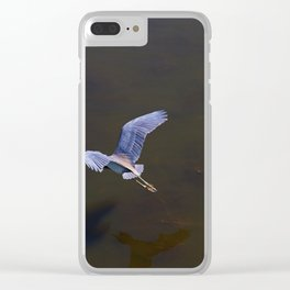 Cypress Flight Clear iPhone Case