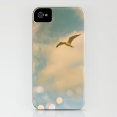 The Lost Gull iPhone (4, 4s) Slim Case