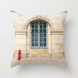 Of Fine Arts Throw Pillow