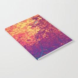 Arboreal Vessels - Aorta Notebook