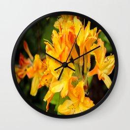 The Lost Gardens of Heligan - Orange Honeysuckle Wall Clock