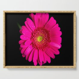 Large Pink Gerber Daisy Serving Tray