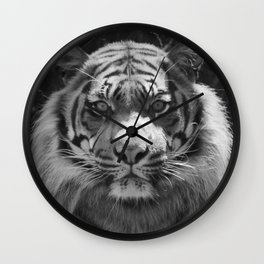 The eye of the tiger Wall Clock