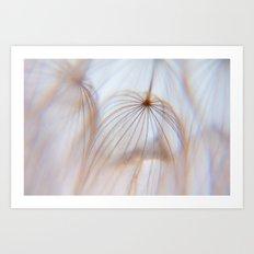 Dandelion Art of the Nature Art Print