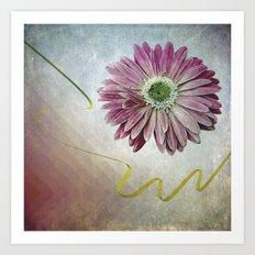 violet daisy with ribbon Art Print