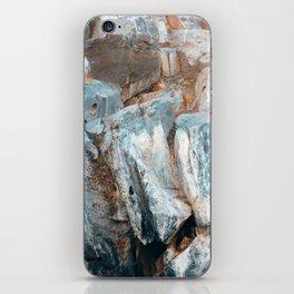 Biontro II iPhone Skin